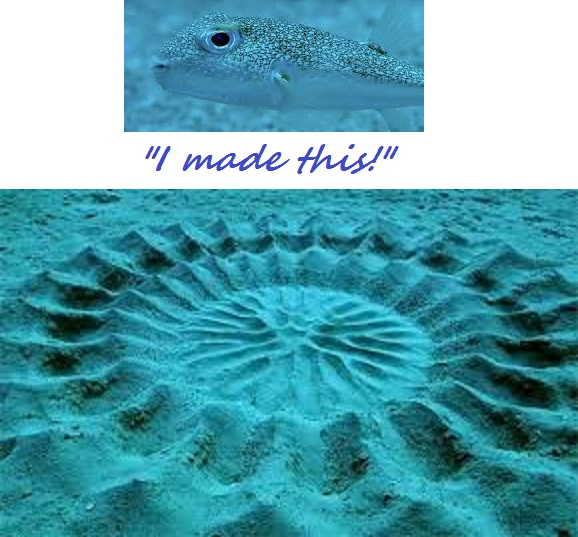 Japanese Pufferfish sand design