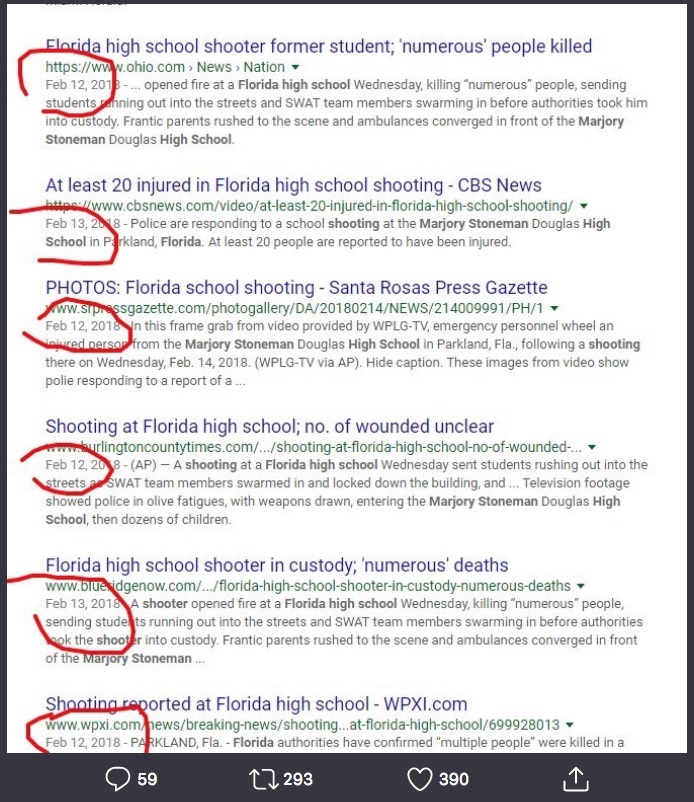 Florida Valentine's Day School Shooting: Anomalies And